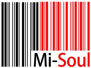 Mi-Soul 320x240 Logo